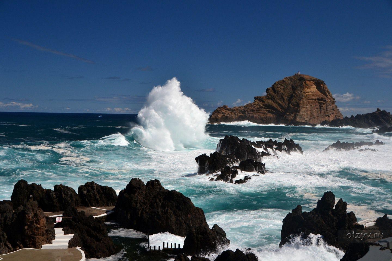 Мадейра португалия фотографии